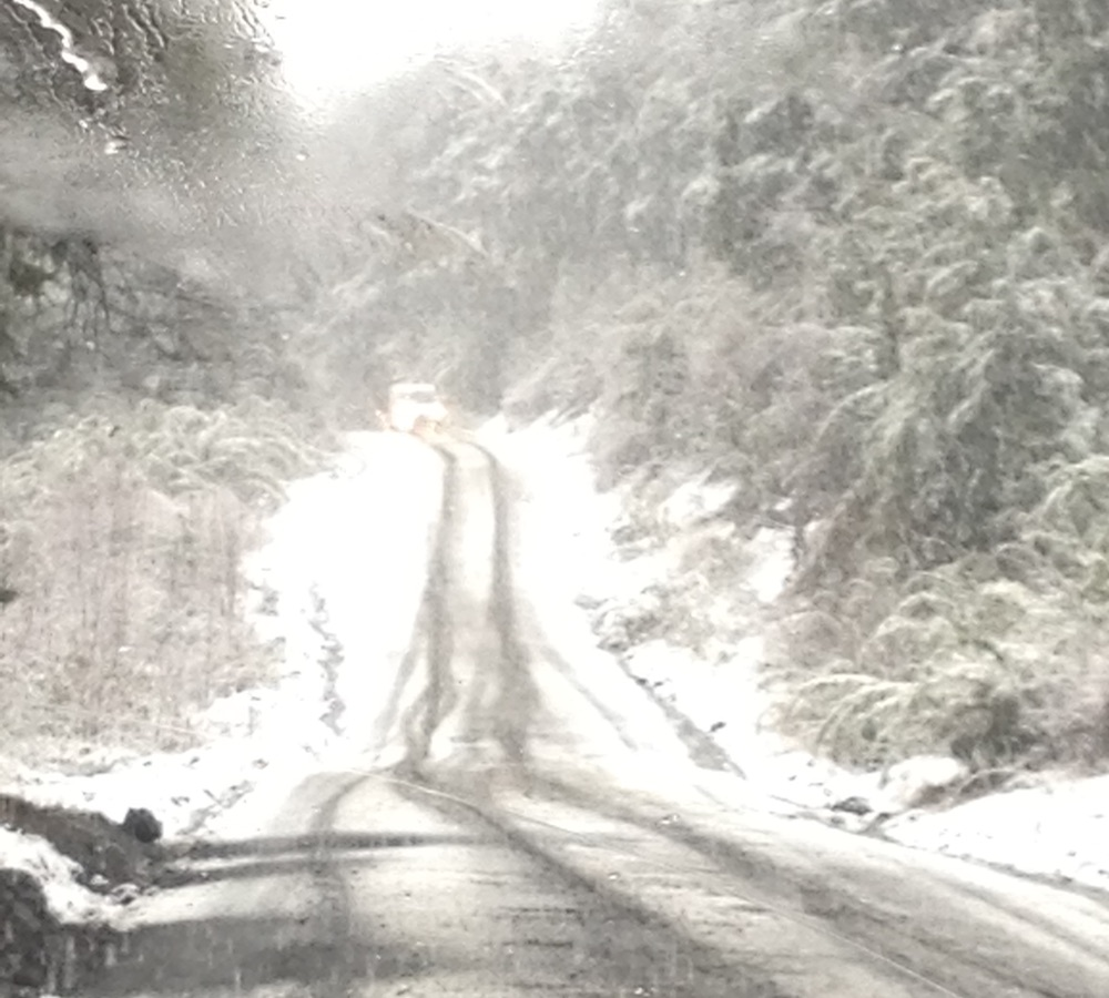 estrada neve chile